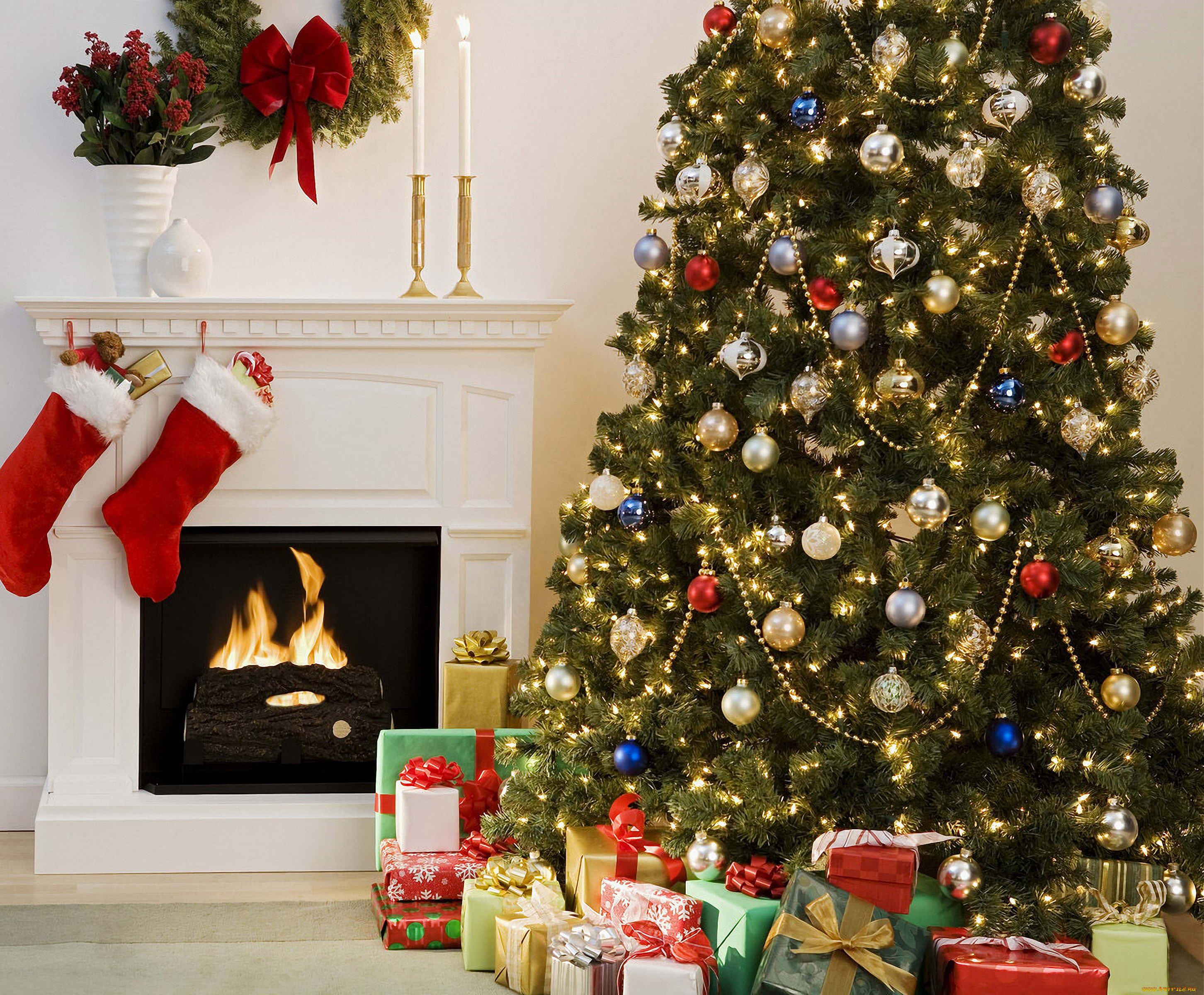 уже новогодние елки фото для дома привет поздравителей